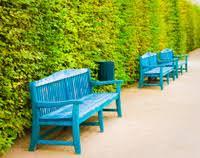 Benches In Park - garden bench in autumn park landscape stock photos freeimages com