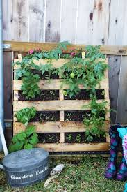 Pallets Garden Ideas How To Make Your Own Vertical Pallet Vegetable Herb Garden