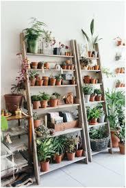 plant stand plant stands for windows spruce ladder shelves shelf