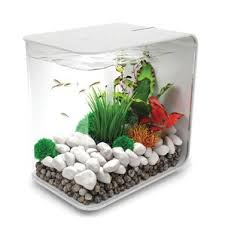 Asian Themed Fish Tank Decorations Fish Tanks U0026 Aquariums You U0027ll Love Wayfair