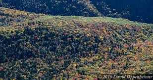 blue ridge parkway fall colors aerial blue ridge parkway u2026 flickr