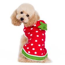 Halloween Costume Large Dogs Dog Sweater Dog Sweaters Bowwowsbest Big Dog Clothes Large
