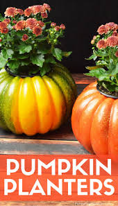 Fall Decorating Ideas On A Budget - 661 best budget decorating ideas images on pinterest budget
