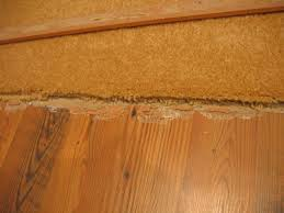 Shaw Laminate Flooring Problems - laminate flooring problems flooring designs