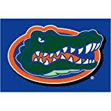 amazon com university of florida gators door mat floor rug