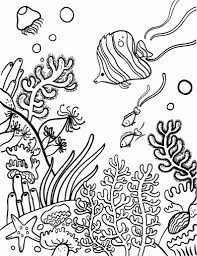 the most amazing coral reef coloring page regarding inspire to