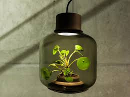 Indoor Plant Design by These Lamps Let You Grow Plants Anywhere Even In Windowless
