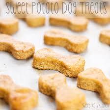 recipe for dog treats sweet pea s kitchen sweet potato dog treats