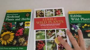 native american edible plants important prepping item don u0027t forget the edible wildlife plant