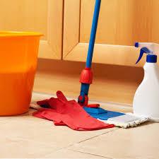 cleaning supplies everyone needs popsugar smart living
