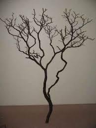 manzanita branches for sale manzanita wood products
