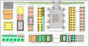 building raised vegetable garden beds layout plans and spacing