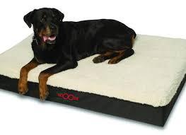 Washable Dog Beds Big Paws Cool Gel Memory Foam Dog Bed Large Orthopedic Dog Beds