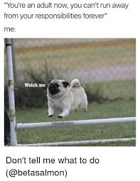 Don T Tell Me What To Do Meme - 25 best memes about dont tell me what to do dont tell me