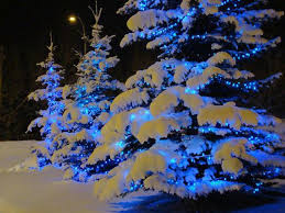 Outdoor Christmas Lights Sale 596 Best Christmas Lights Images On Pinterest Christmas Lights