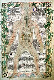 history of medicine wikipedia