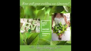 pantone colour of the year 2017 pantone u0027s color of the year 2017 greenery youtube