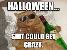 Halloween Party Meme - day after halloween memes images pumpkining pinterest memes