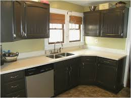 ideas for painted kitchen cabinets fresh painted kitchen cabinets home design gallery