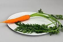 food coloring wikipedia