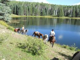 Colorado Gmu Map by Colorado Outfitting Business For Sale Elk Hunting