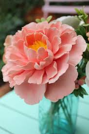 peony flower what makes a great peonie coral pink peony and clay