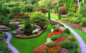 flower garden images free download the garden inspirations