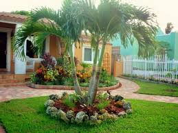 Front Yard Tree Landscaping Ideas Best 25 Landscaping With Palm Trees Ideas On Pinterest Palm
