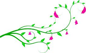 flower vines clipart