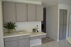 Painted Kitchen Cabinets Before And After by Stupendous Painting Formica Cabinets Before And After Pictures 51