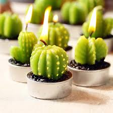 home decor candles scented candles green plants candle decoration cactus candles for