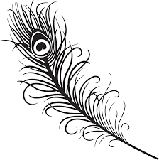 black and white peacock designs free download clip art free peacock madness on clipart library peacocks peacock feathers and