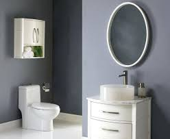 Oval Bathroom Mirrors Brushed Nickel Oval Bathroom Mirrors Pterodactyl Me