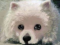 american eskimo dog tattoo dog art doggies pinterest