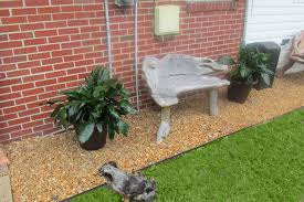 Landscaping Ideas For Backyard With Dogs by Virginia Beach Landscaping Ideas