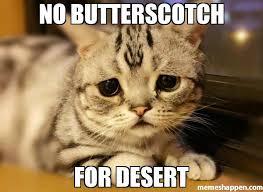 Meme Kitty - no butterscotch for desert meme kitty 49766 memeshappen