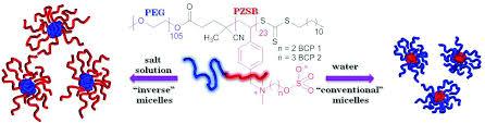 dual hydrophilic and salt responsive schizophrenic block