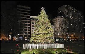 boston common tree lighting nov 29 go to it events around boston