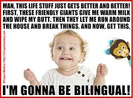 Meme At - new bilingual meme at bilingual monkeys and more bilingual memes at