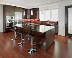 Stainless Steel Kitchen Sink Cabinet by Dark Kitchen Cabinets With Dark Wood Floors Pictures Single Bowl