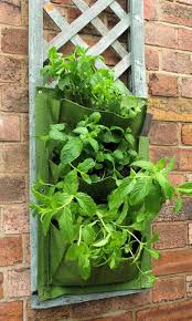 Diy Vertical Herb Garden Secret Garden Club Growing Up The Diy Vertical Garden