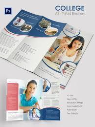 tri fold school brochure template brochure templates for word free fieldstation co