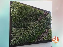 how to make a living wall with ikea and terri o sonoran living