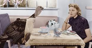thanksgiving true story nine ways to enjoy a fact based gun debate with your thanksgiving bird