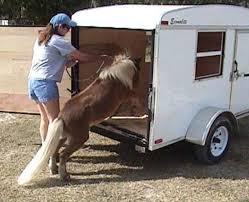 Best 25 mini horse barn ideas small barns horse