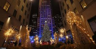 tree lighting in new york rainforest islands ferry