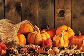 best places to get your pumpkin fix in minnesota wcco cbs