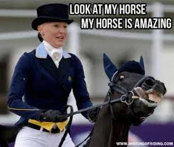 Horse Riding Meme - the top 10 best blogs on horse memes