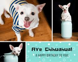 Personalized Dog Photo Album Design Your Own Birthday Photo Collage Canva