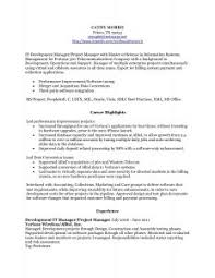 15 Top Resume Objectives Examples by Examples Of Resumes 89 Amazing Best Resume Samples Latest